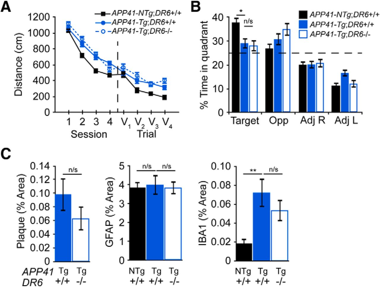 A Death Receptor 6 Amyloid Precursor Protein Pathway Regulates Light Laser Led Gt Circuits Running Message Board Cd4017 Download Figure