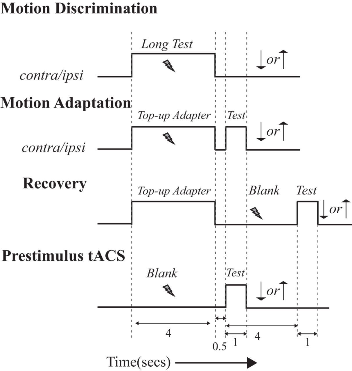 Transcranial Alternating Current Stimulation Attenuates Visual Diagram Download Figure
