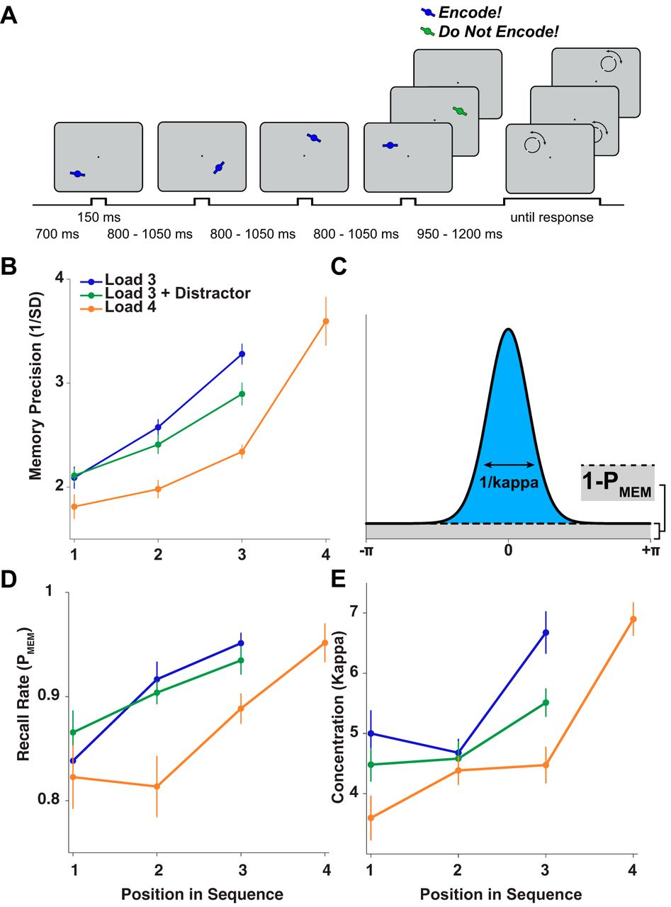 Oscillatory Brain State Predicts Variability In Working Memory Categorybandreject Filter Circuits Wikimedia Commons Download Figure