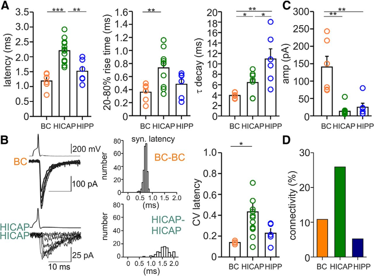 Synaptic Properties of SOM- and CCK-Expressing Cells in ... on