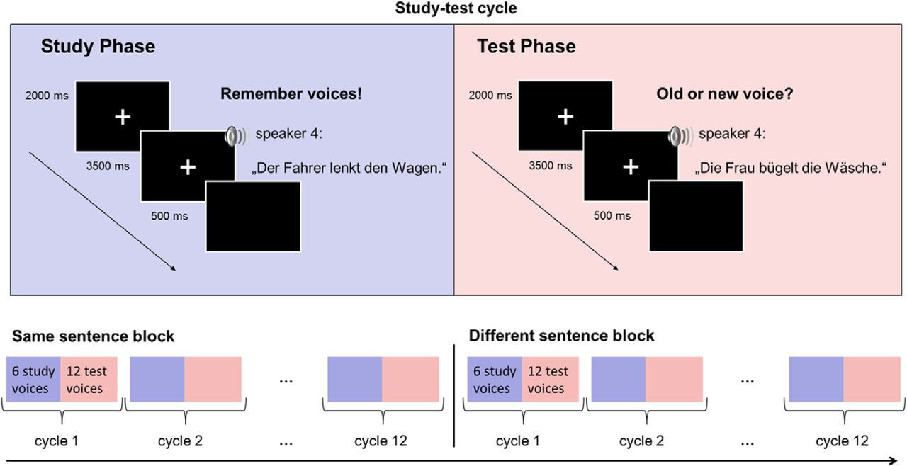 Electrophysiological Correlates of Voice Learning and