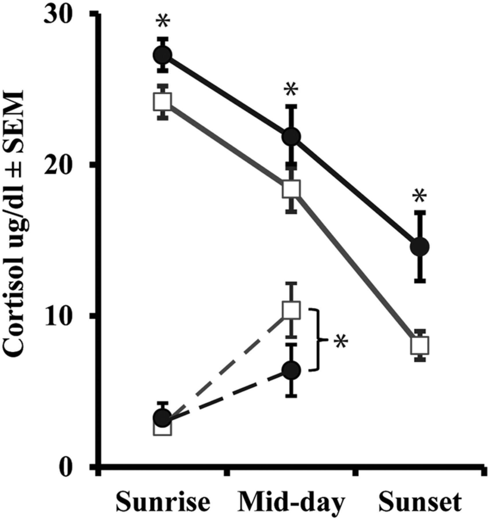Neonatal Amygdala Lesions Lead to Increased Activity of Brain CRF