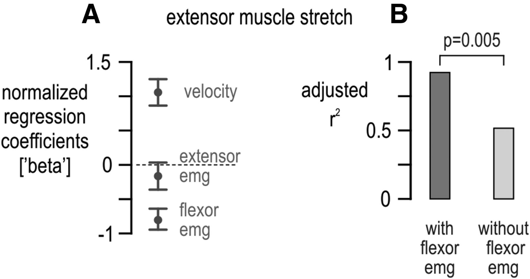 Human Muscle Spindle Sensitivity Reflects The Balance Of Activity Figure 4 Block Diagram Emg Signal Behaviour From Index Download