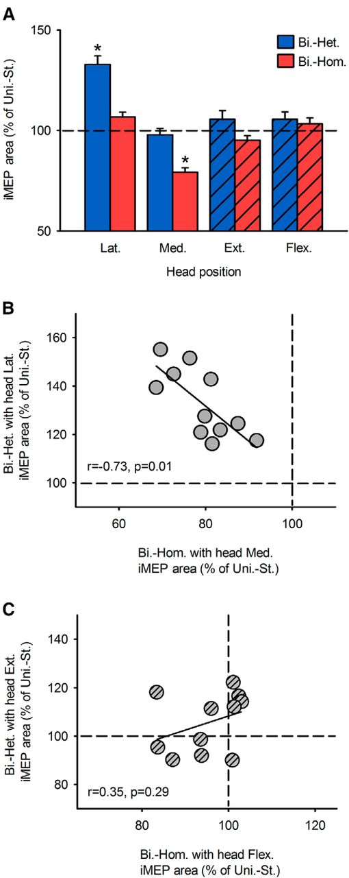 Selective Activation of Ipsilateral Motor Pathways in Intact