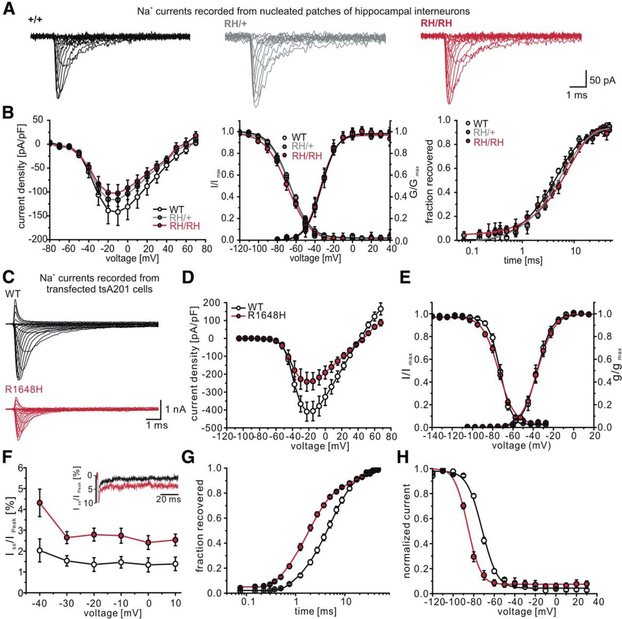 Impaired Action Potential Initiation in GABAergic