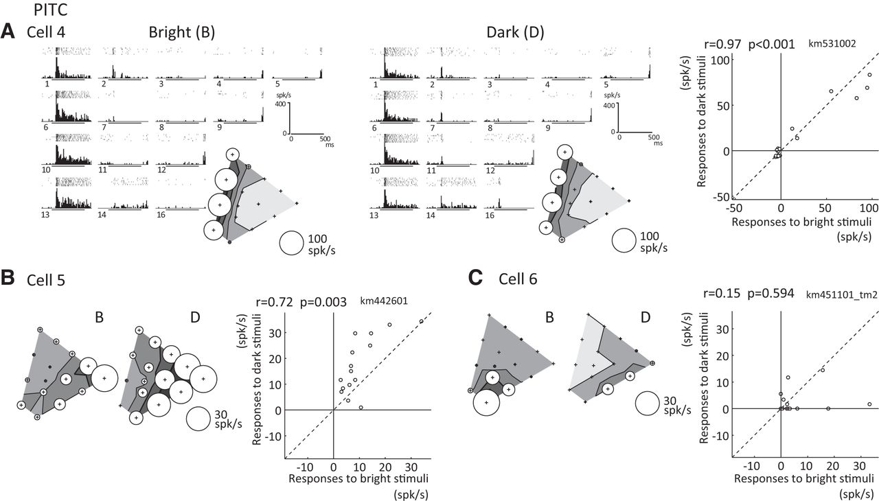 Effects of luminance contrast on the color selectivity of neurons in download figure ccuart Images