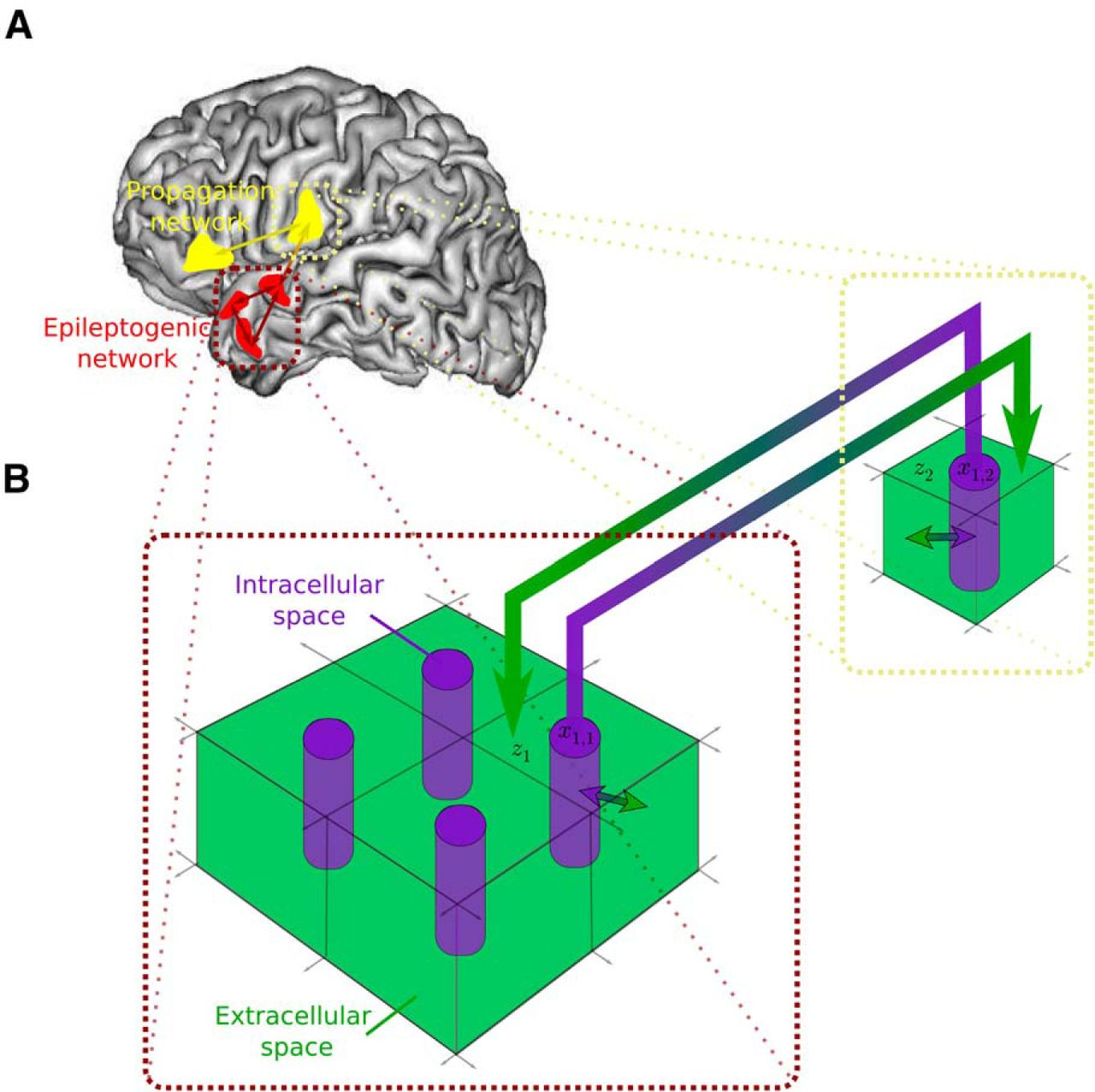 Permittivity Coupling Across Brain Regions Determines Seizure Fig 512 A Class B Circuit Constant Voltage Push Download Figure