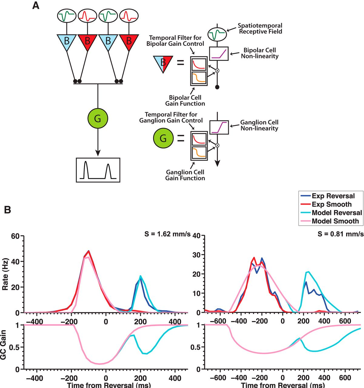 The Neural Circuit Mechanisms Underlying Retinal Response To Control Input Notes Time Delay Circuits Recovery Download Figure
