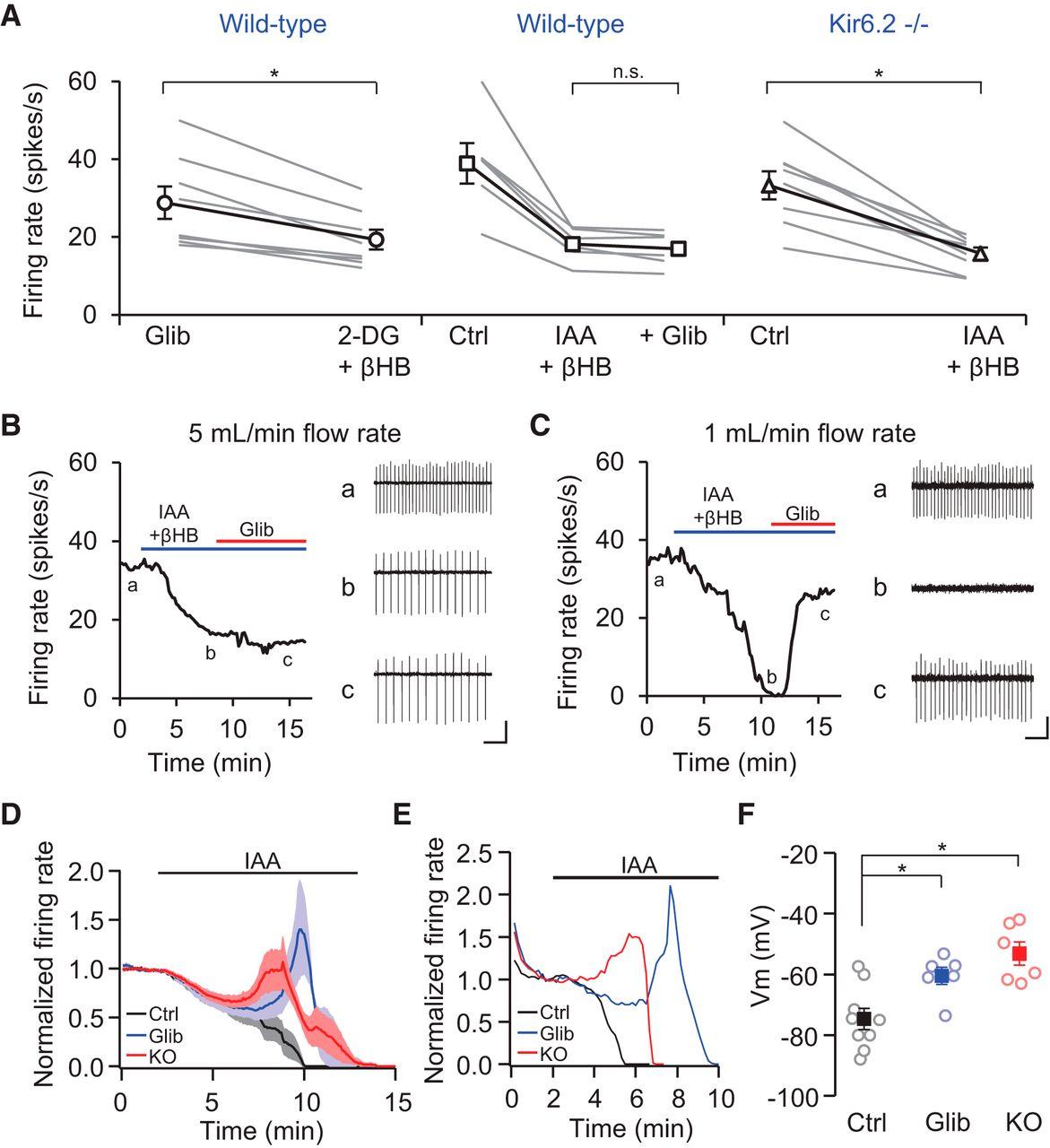 Metabolism regulates the spontaneous firing of substantia nigra pars download figure fandeluxe Gallery