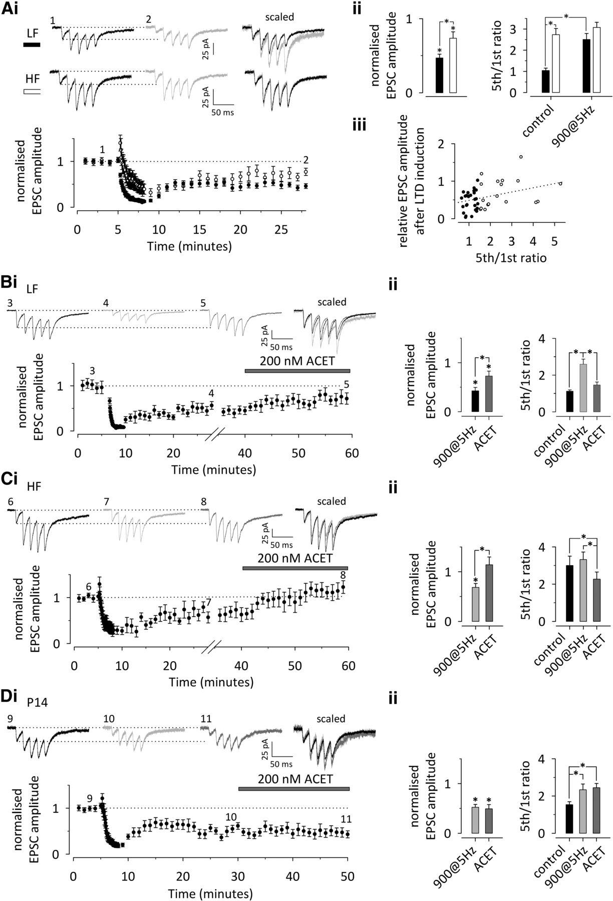 Activity Dependent Upregulation Of Presynaptic Kainate Receptors At 20060831152017hanse370wiringppt Download Figure