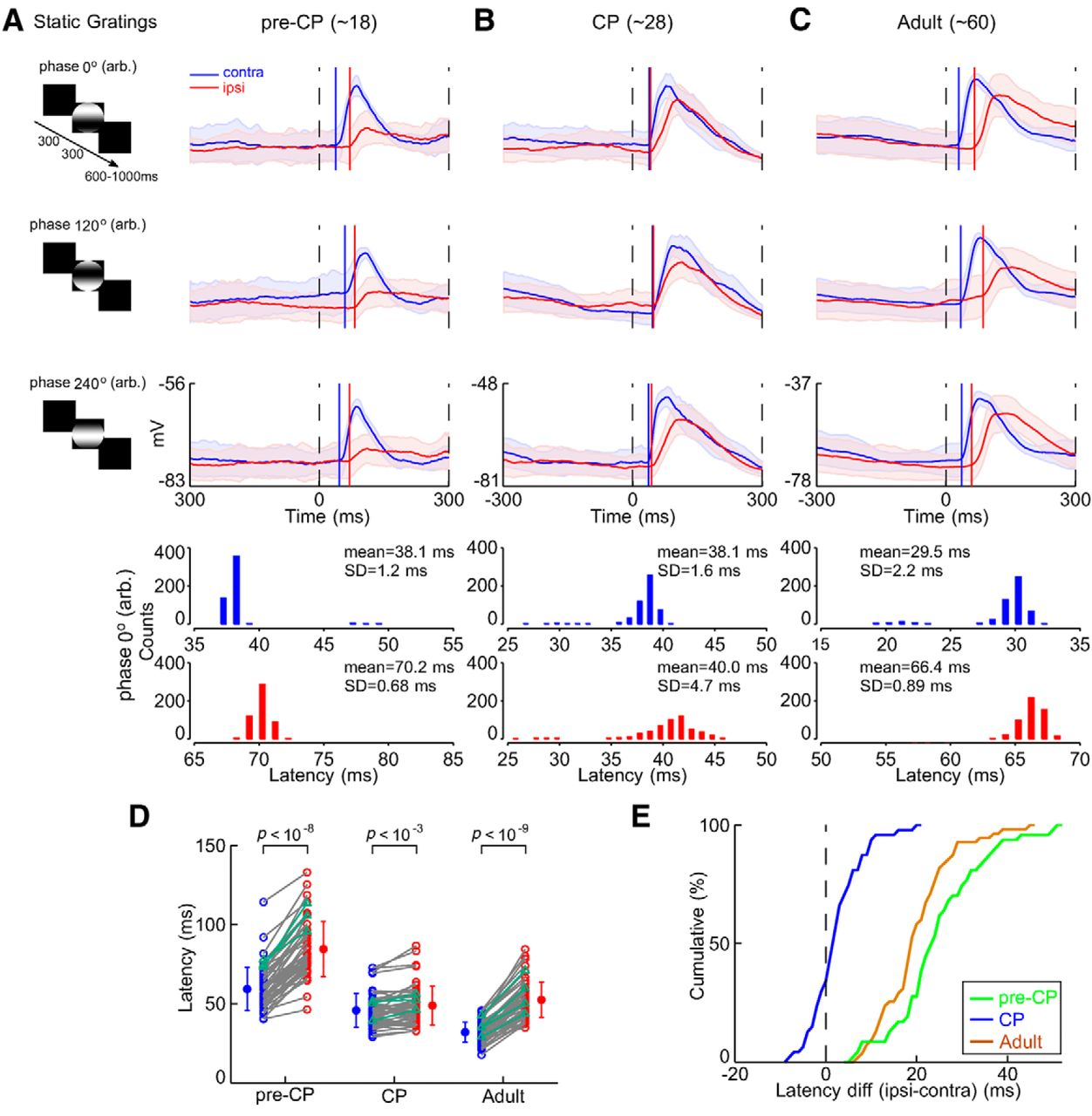 Binocular Input Coincidence Mediates Critical Period Plasticity in
