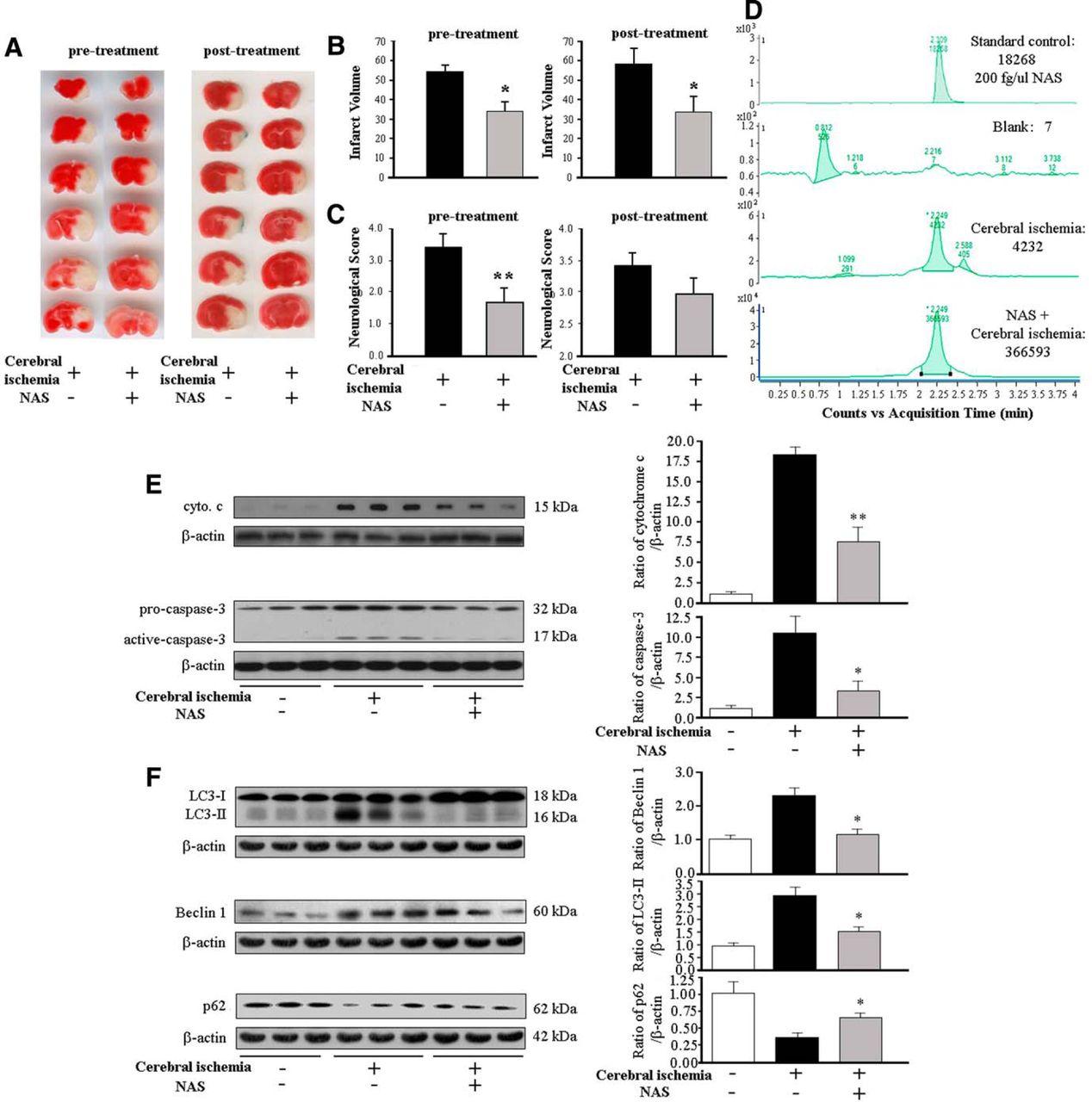 N Acetyl Serotonin Offers Neuroprotection Through Inhibiting Wasser Liquid Level Control Switch Ls 15 Download Figure