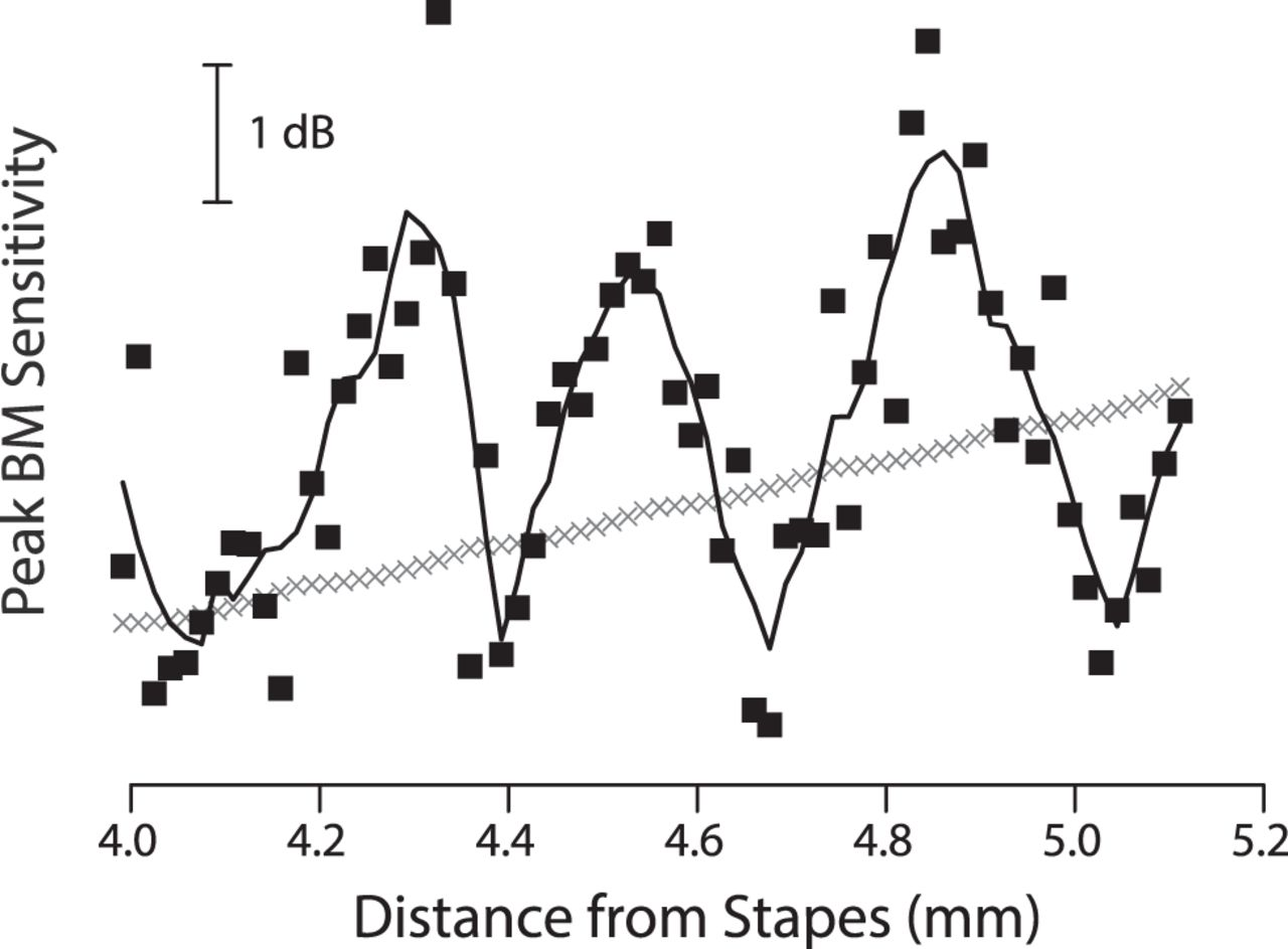 The Spiral Staircase: Tonotopic Microstructure and Cochlear
