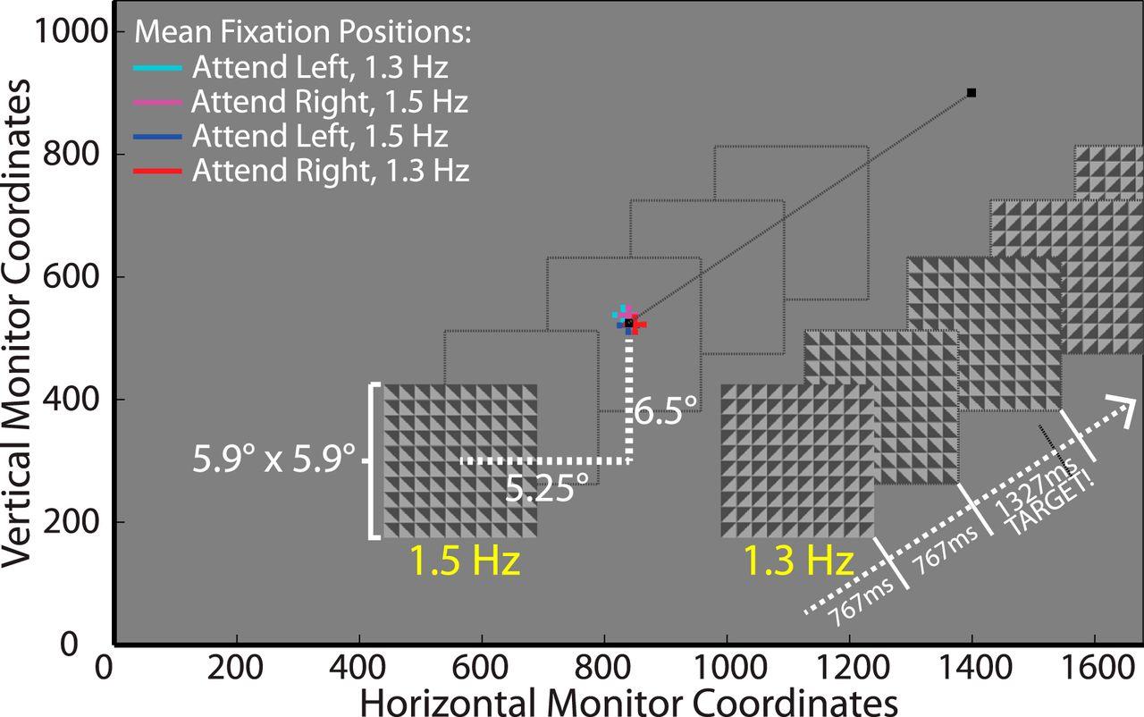 Oscillatory Recruitment Of Bilateral Visual Cortex During Spatial Figure1 Color Sensor Circuit Download Figure