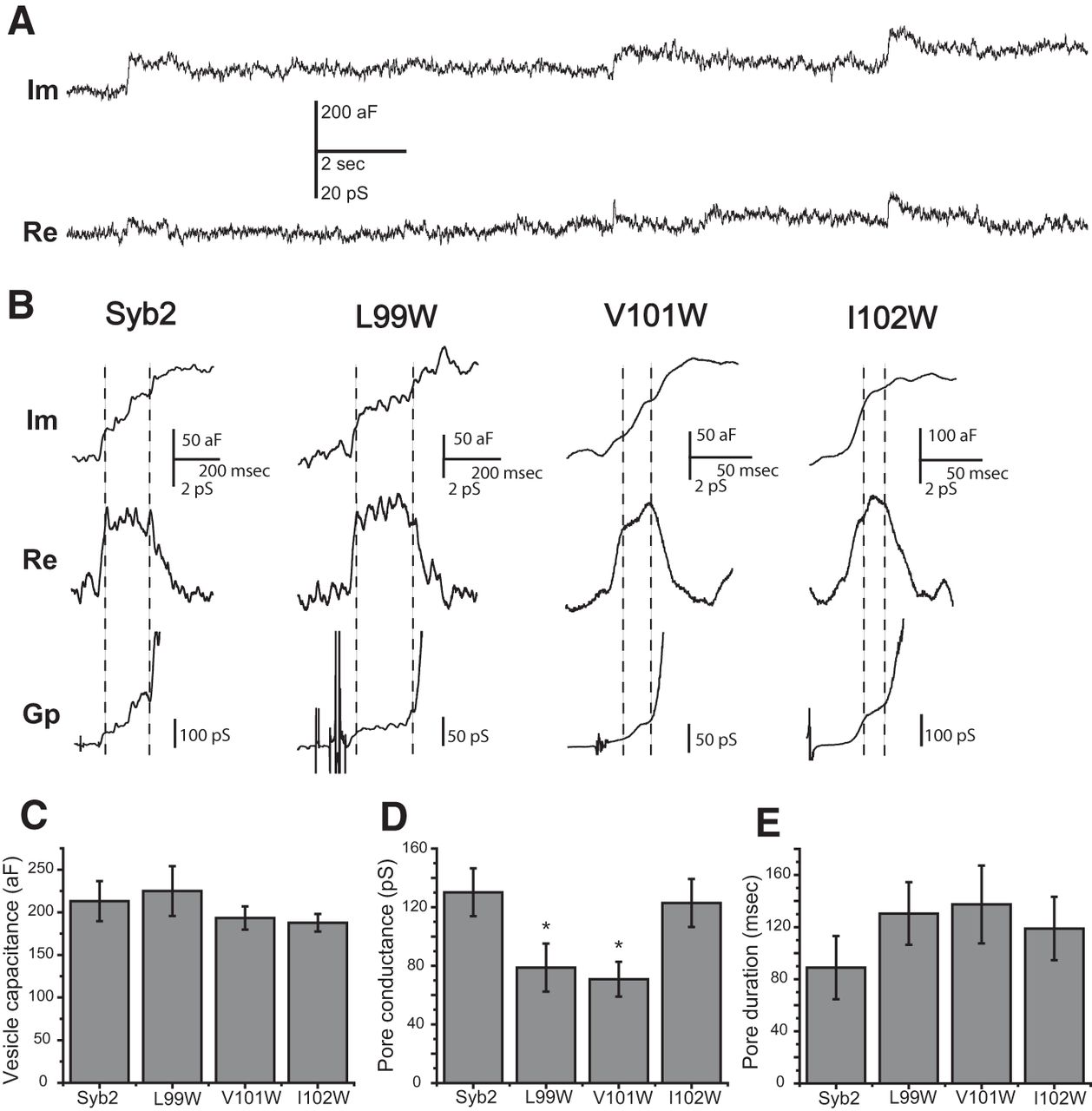 A Structural Role For The Synaptobrevin 2 Transmembrane Domain In Completed Lockin Amplifier Circuit Board Alternate View Download Figure