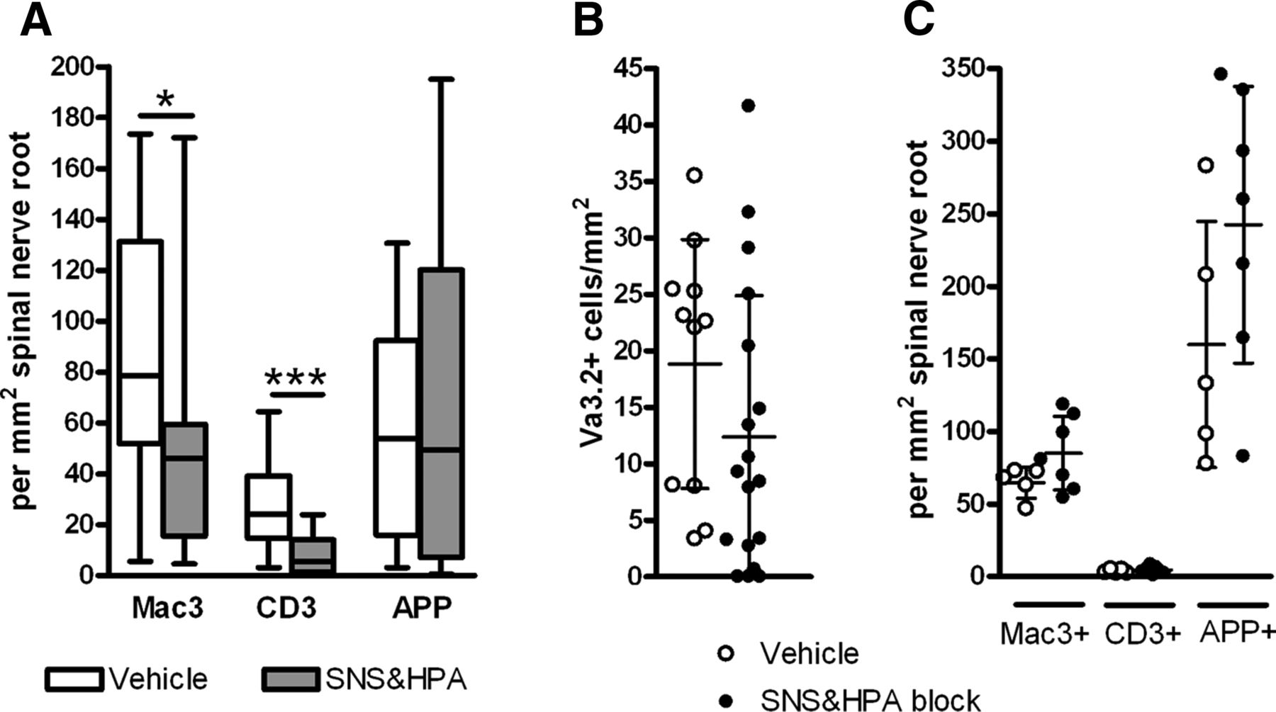 Blocking Stroke-Induced Immunodeficiency Increases CNS