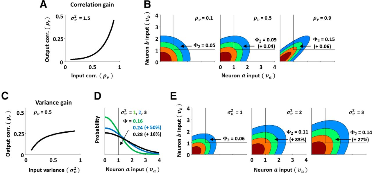 Nonlinear Transfer of Signal and Noise Correlations in Cortical