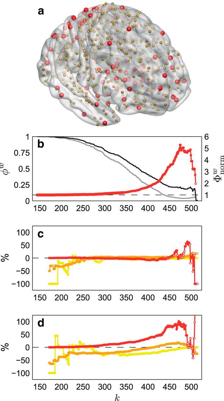 Developmental Changes in Brain Network Hub Connectivity in