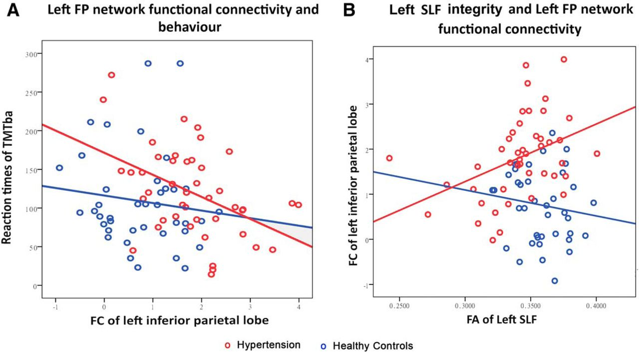 Cognition And Behavior White Matter >> Disrupted Frontoparietal Network Mediates White Matter Structure