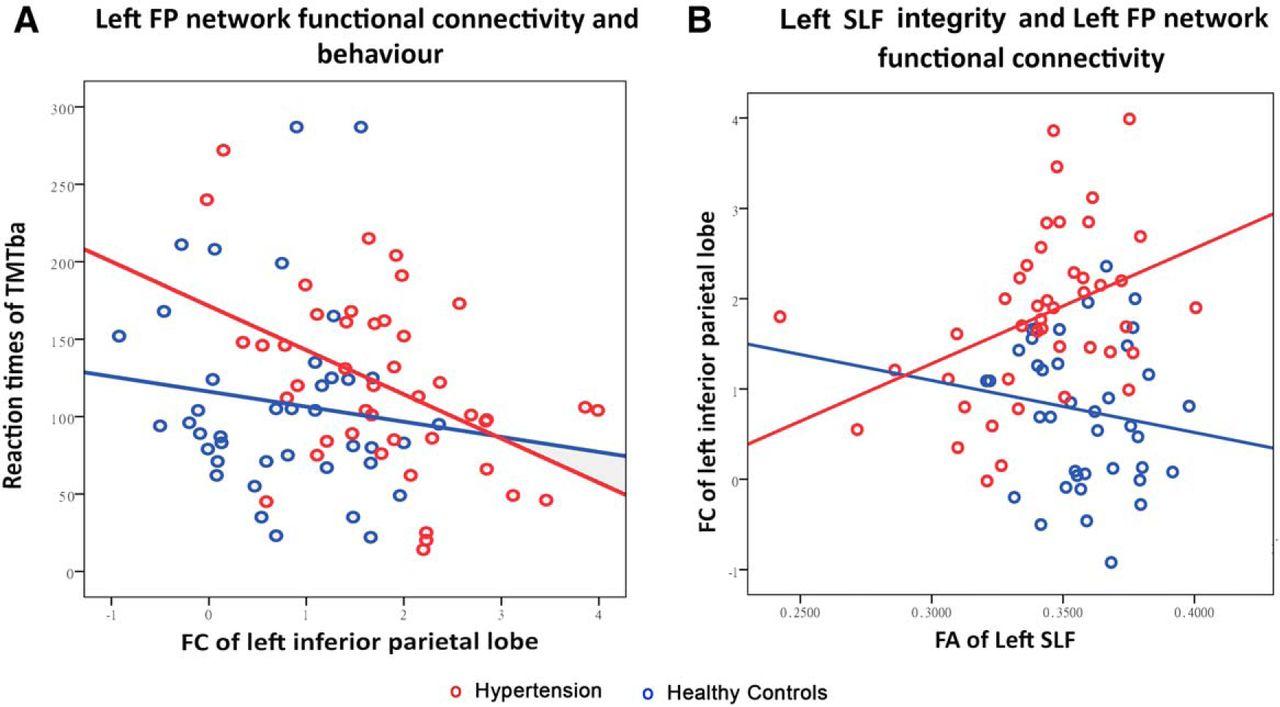 Cognition And Behavior White Matter >> Disrupted Frontoparietal Network Mediates White Matter