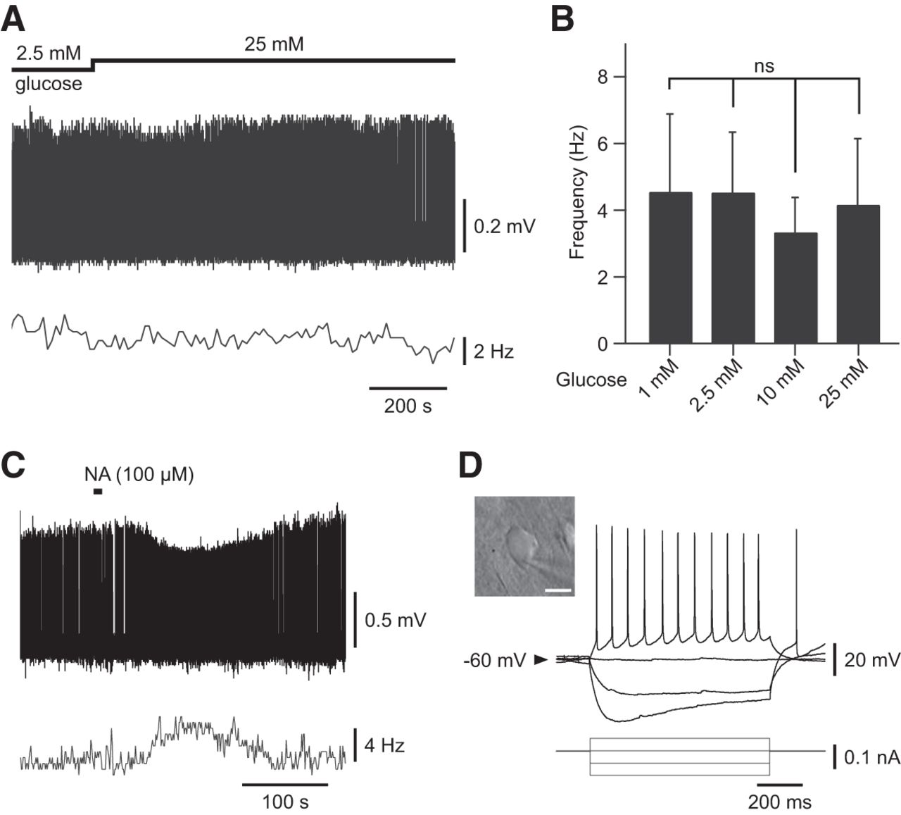 Glucose Induces Slow-Wave Sleep by Exciting the Sleep