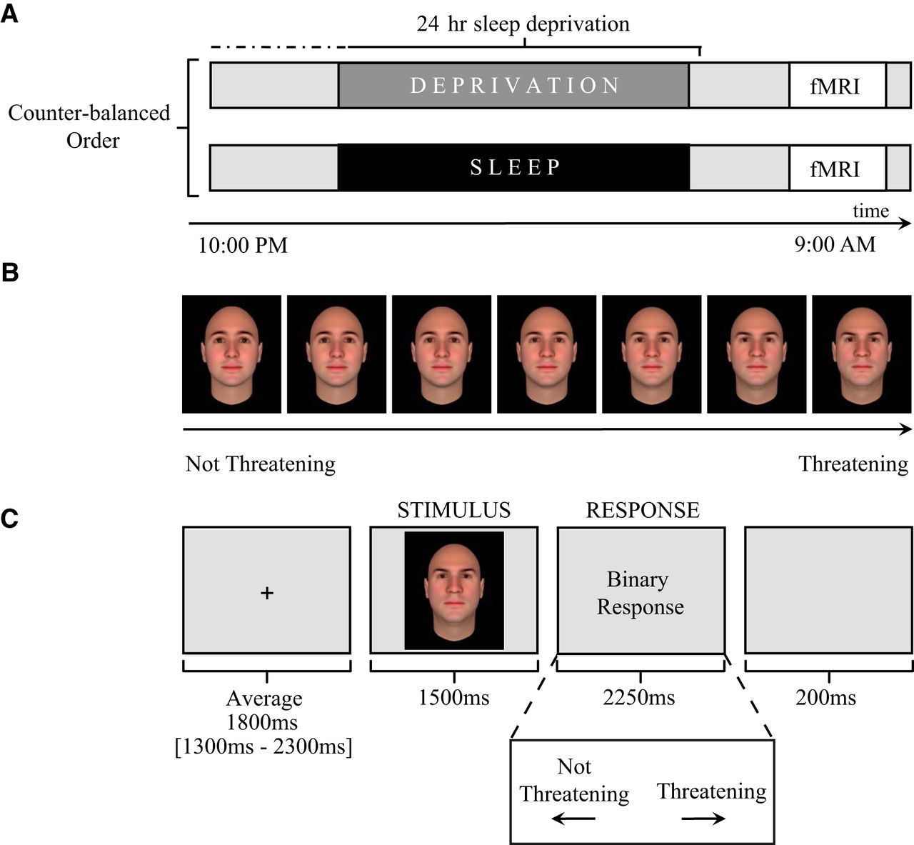Sleep Deprivation Impairs the Human Central and Peripheral
