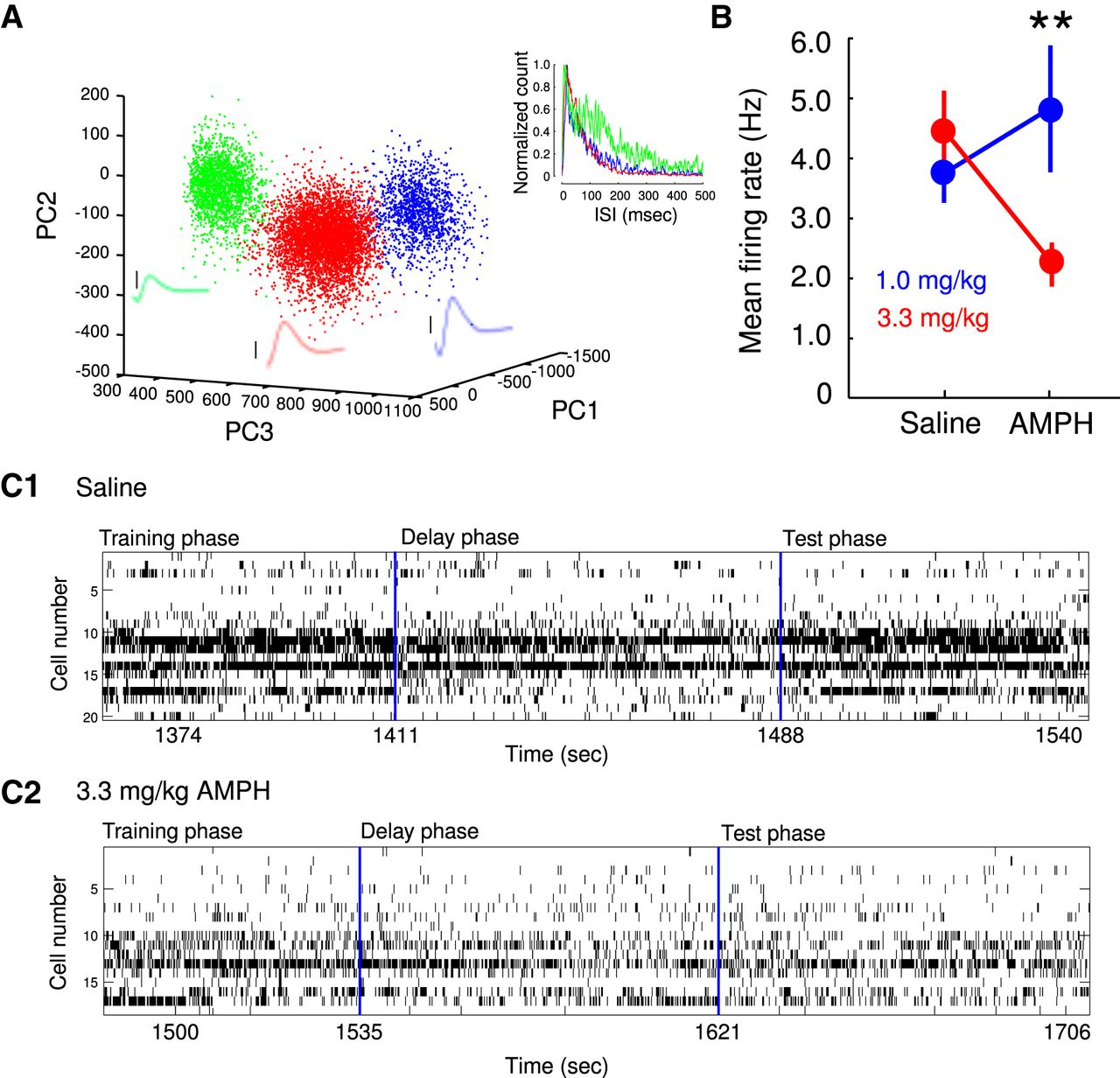 Amphetamine Exerts Dose Dependent Changes In Prefrontal Cortex Wire Color Code E1 Download Figure