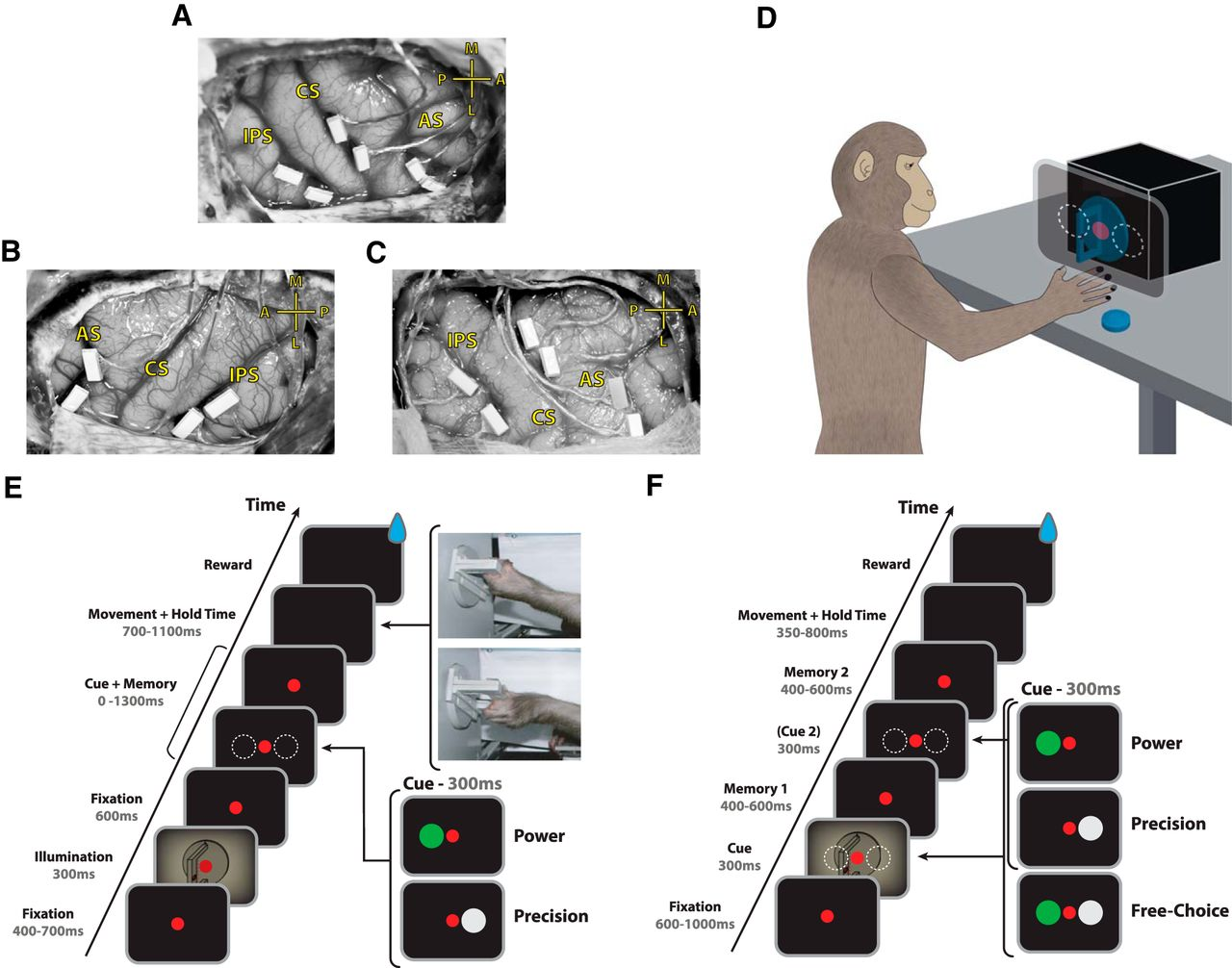 Predicting Reaction Time from the Neural State Space of the Premotor