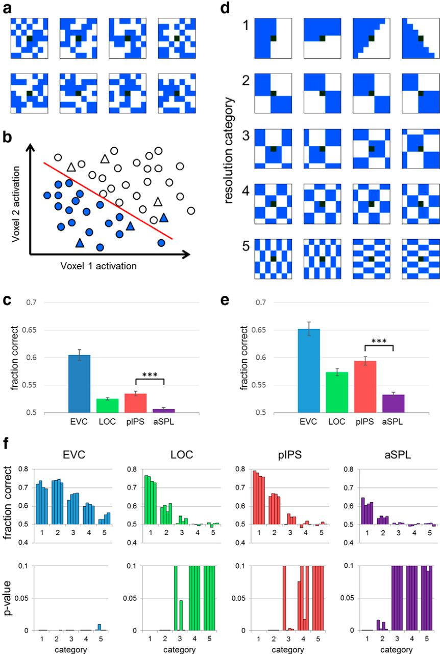 Position And Identity Information Available In Fmri Patterns Of