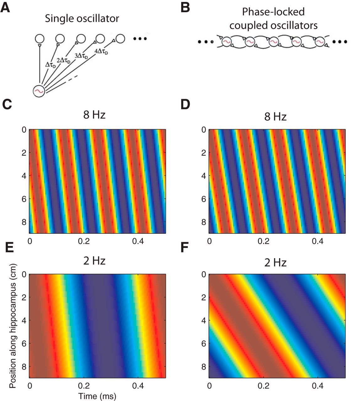 Traveling Theta Waves in the Human Hippocampus | Journal of
