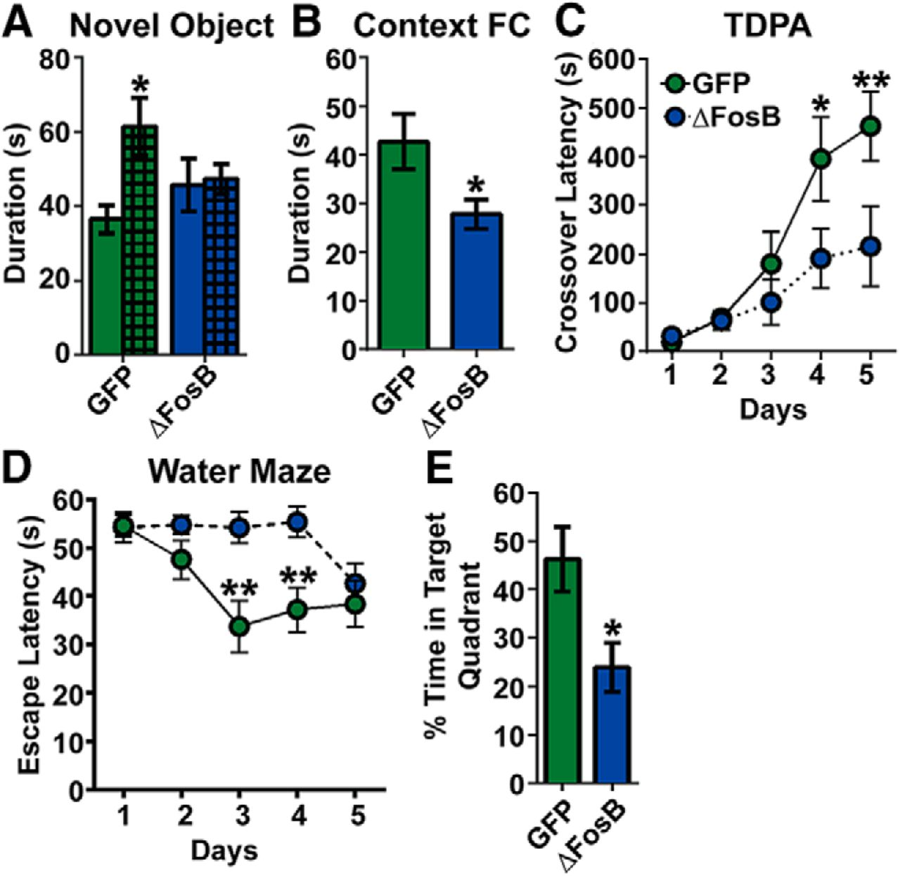 Experience-Dependent Induction of Hippocampal ΔFosB Controls