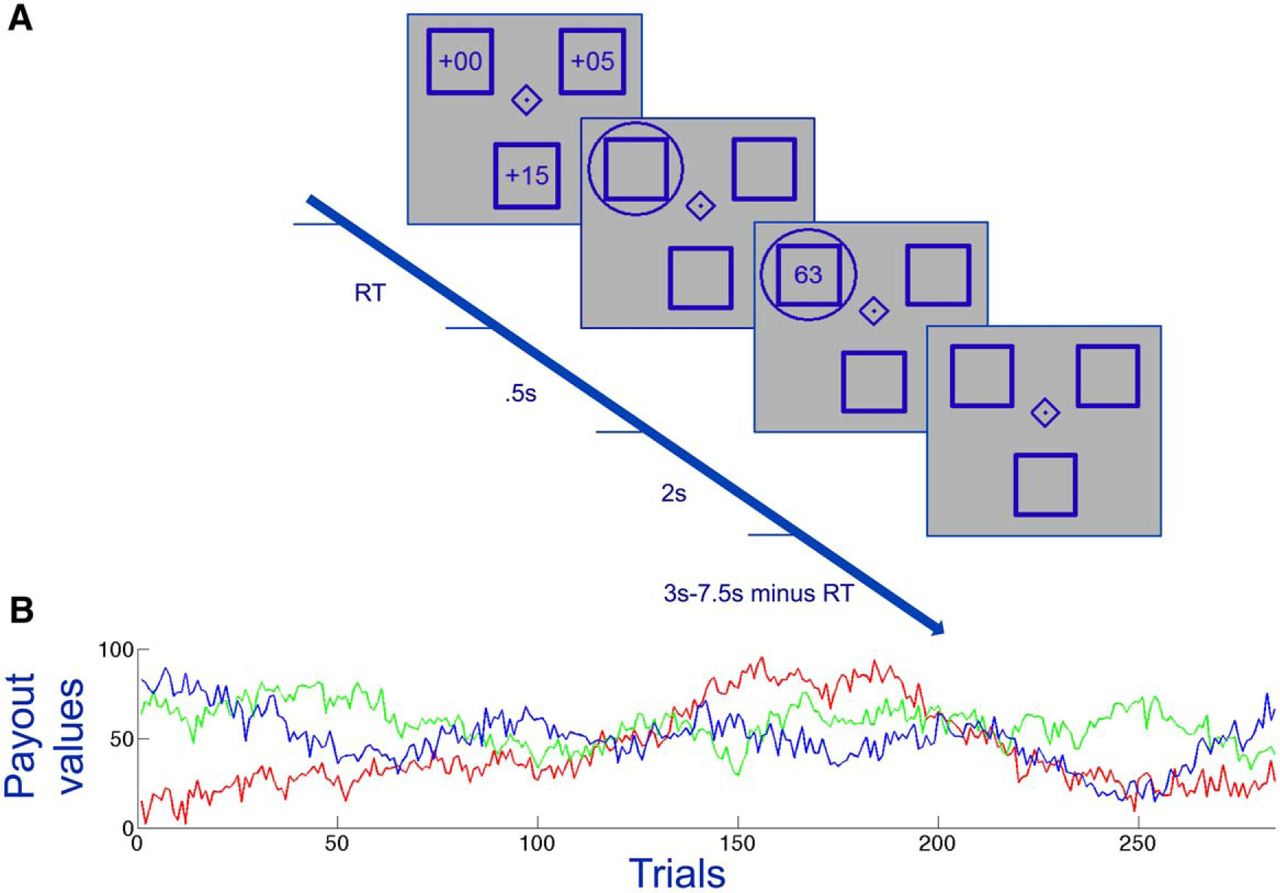 Transcranial Stimulation over Frontopolar Cortex Elucidates