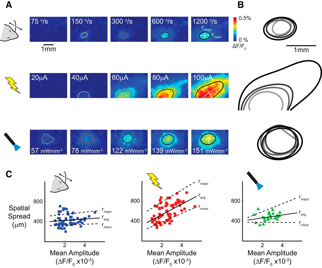 Electrical And Optical Activation Of Mesoscale Neural Circuits With U2014 Lights Neurons Fiber On Wiring Your Home For Optic Download Figure
