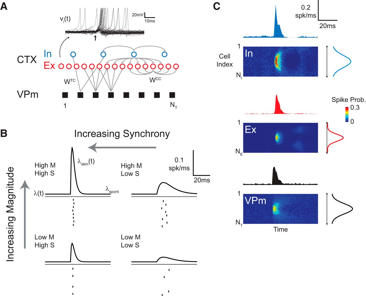 Electrical And Optical Activation Of Mesoscale Neural Circuits With Above Circuit Diagram For Diode Matrix Showing Wiring References Download Figure Open In New Tab
