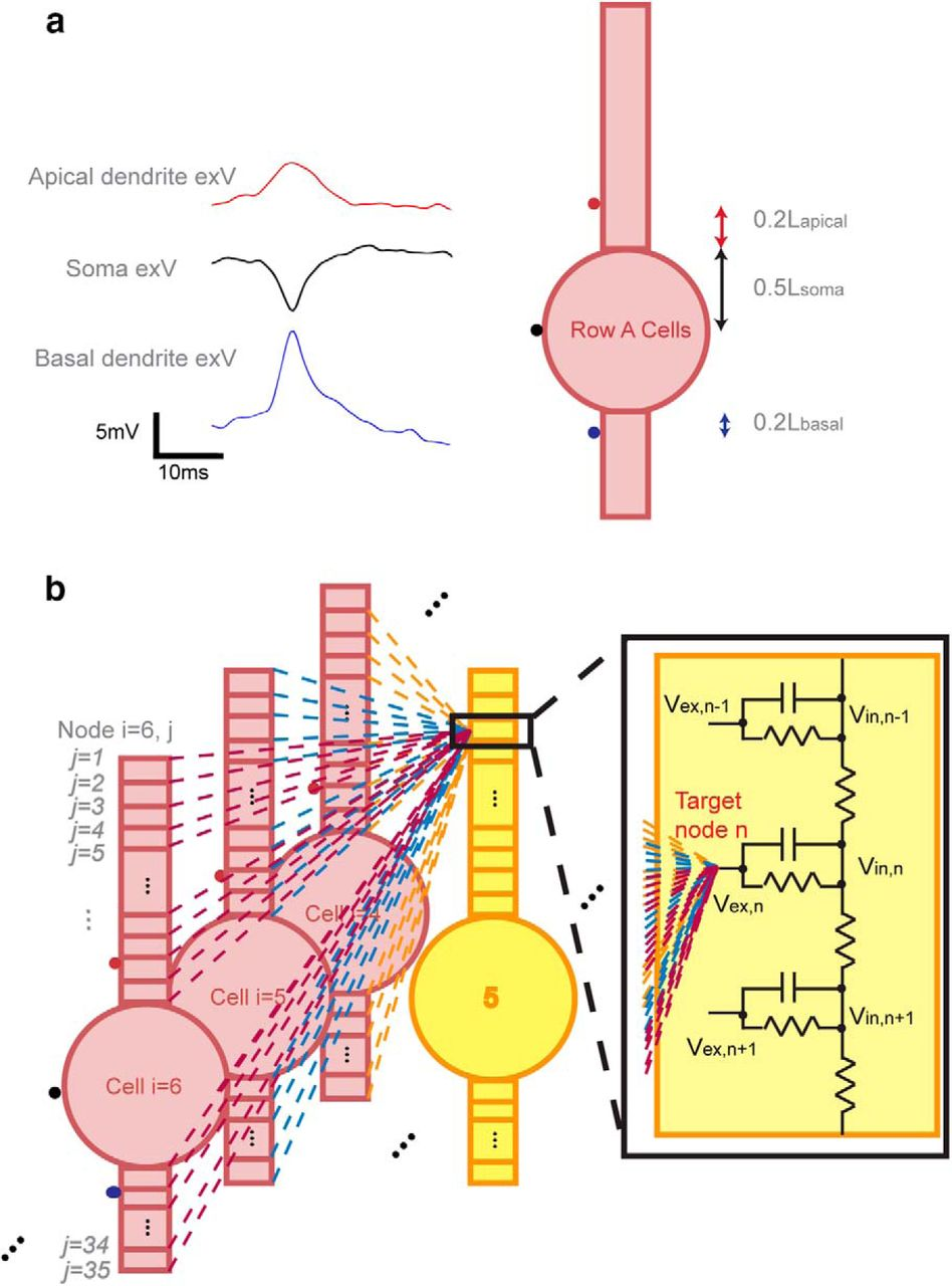 Can Neural Activity Propagate By Endogenous Electrical Field J 380 Circuit Board Wiring Diagram Download Figure