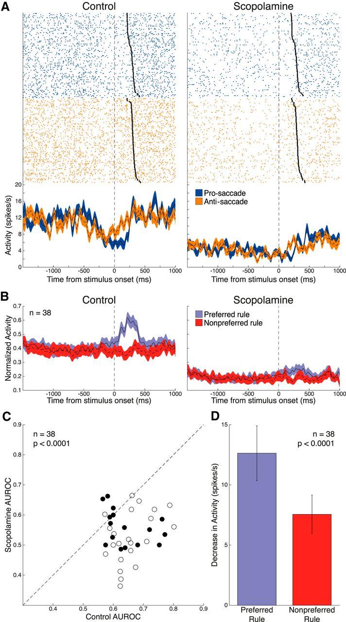 Muscarinic Attenuation Of Mnemonic Rule Representation In Macaque Diagram Wiring Iti Concord Download Figure