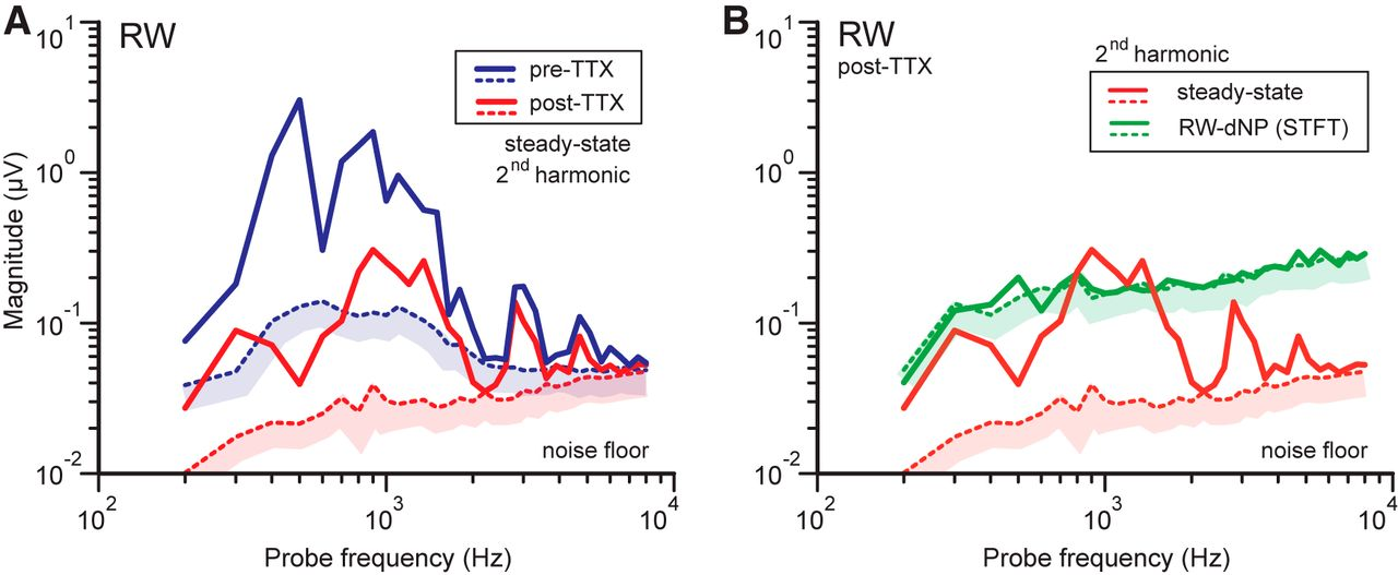 Assessment of the Limits of Neural Phase-Locking Using Mass