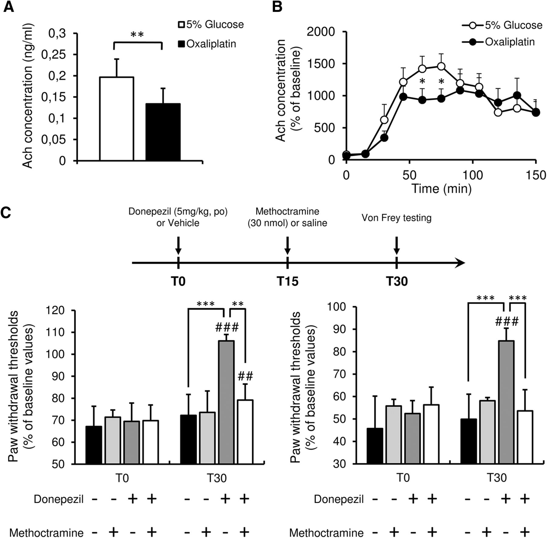 Insular Cortex Alterations In Mouse >> Cholinergic Neurotransmission In The Posterior Insular Cortex Is