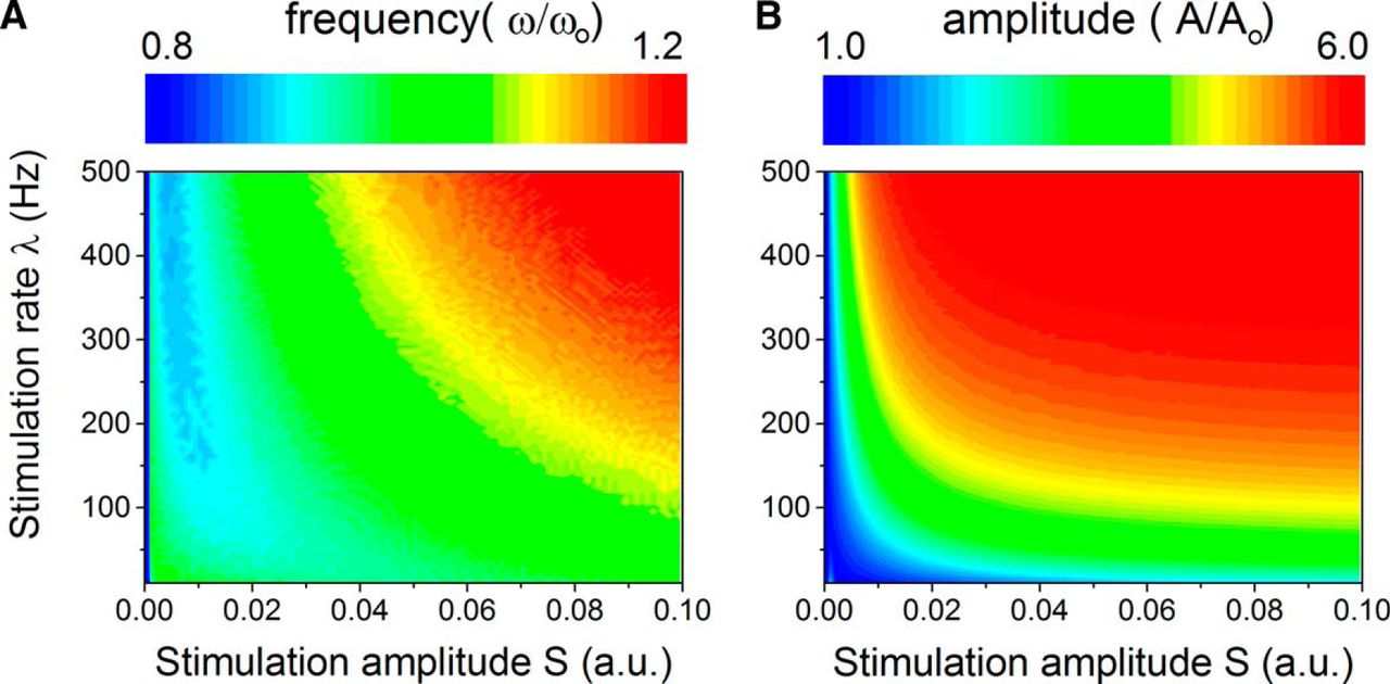Stimulus Statistics Shape Oscillations In Nonlinear Recurrent Neural For The Circuit And Also Determine Frequency Of Download Figure
