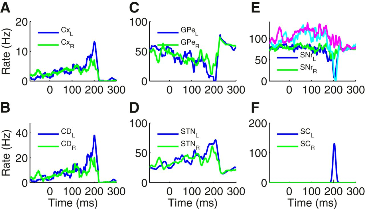 Role Of The Indirect Pathway Basal Ganglia In Perceptual Meanwhile 14th Subcircuit A Second Vacancy Has Recently Download Figure