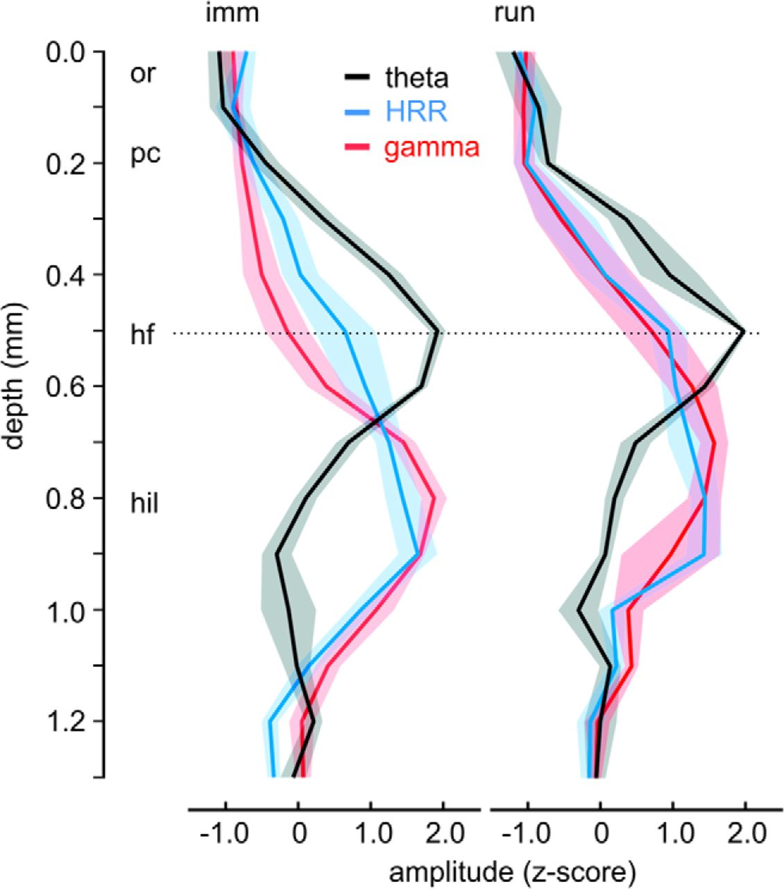Hippocampal Respiration Driven Rhythm Distinct From Theta Nichrome Wiring In Parallel Download Figure