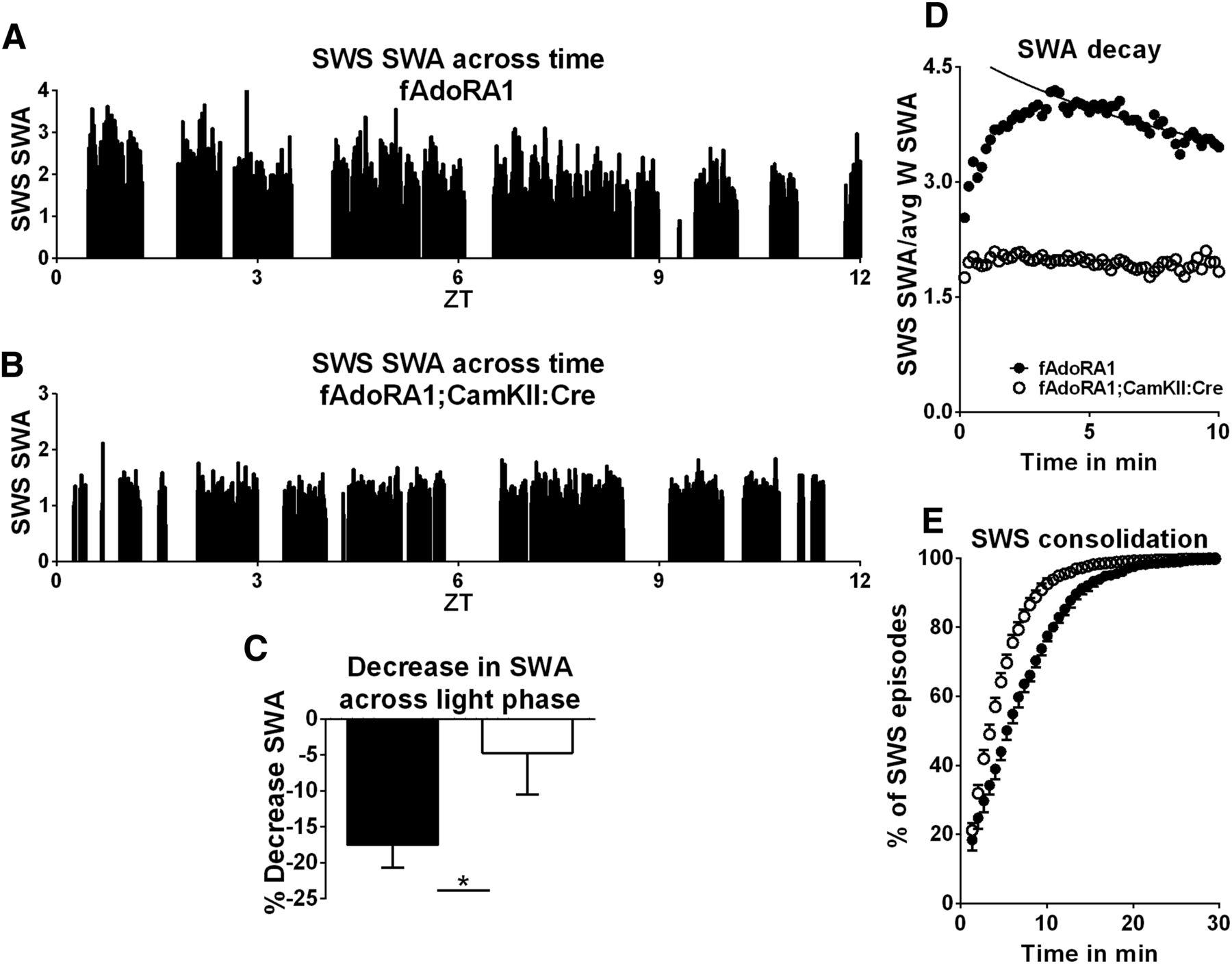 An Adenosine Mediated Glial Neuronal Circuit For Homeostatic Sleep