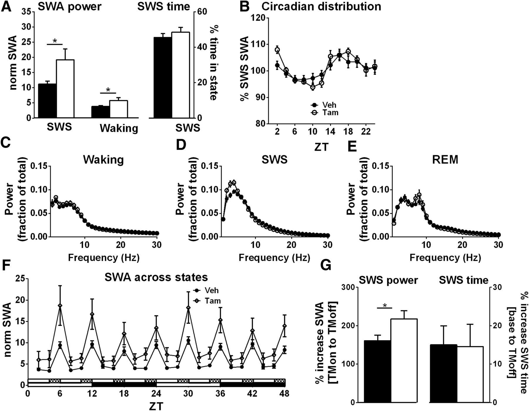 An Adenosine Mediated Glial Neuronal Circuit For Homeostatic Sleep Emg Hz Wiring Diagram Download Figure