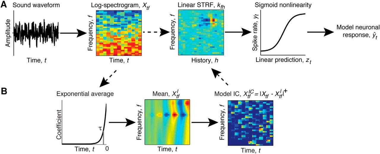 Incorporating Midbrain Adaptation to Mean Sound Level