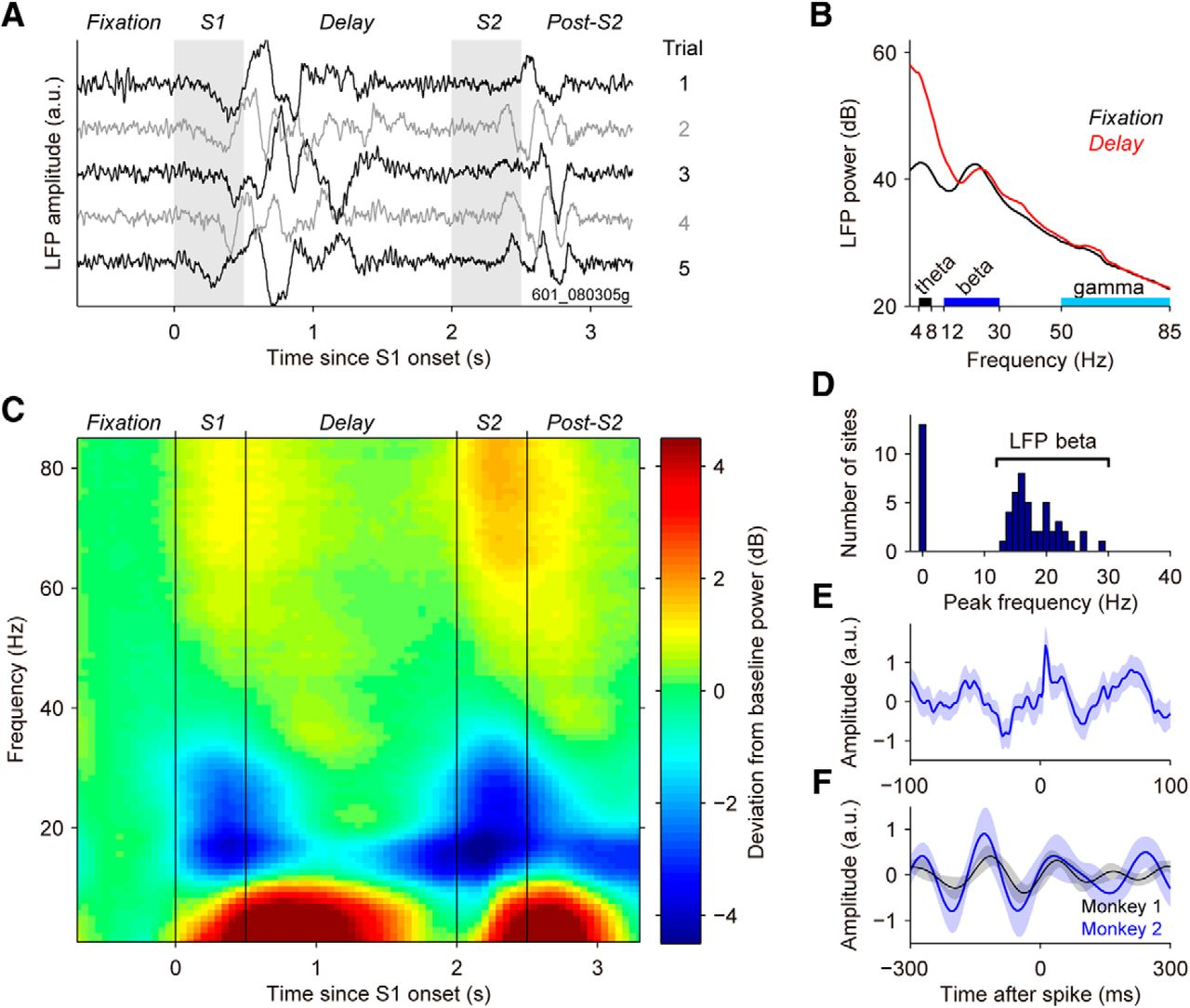Transitions Between Multiband Oscillatory Patterns Characterize Relay G50 Current Draw Download Figure