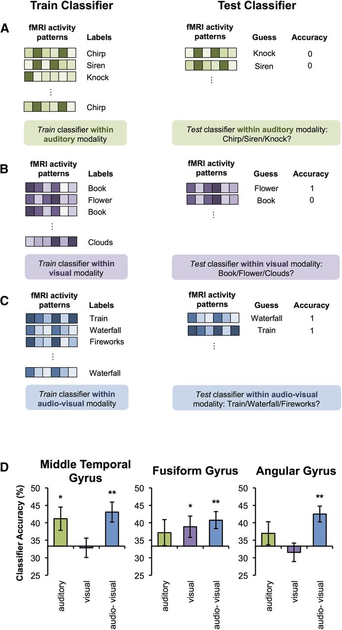 Multimodal Feature Integration in the Angular Gyrus during