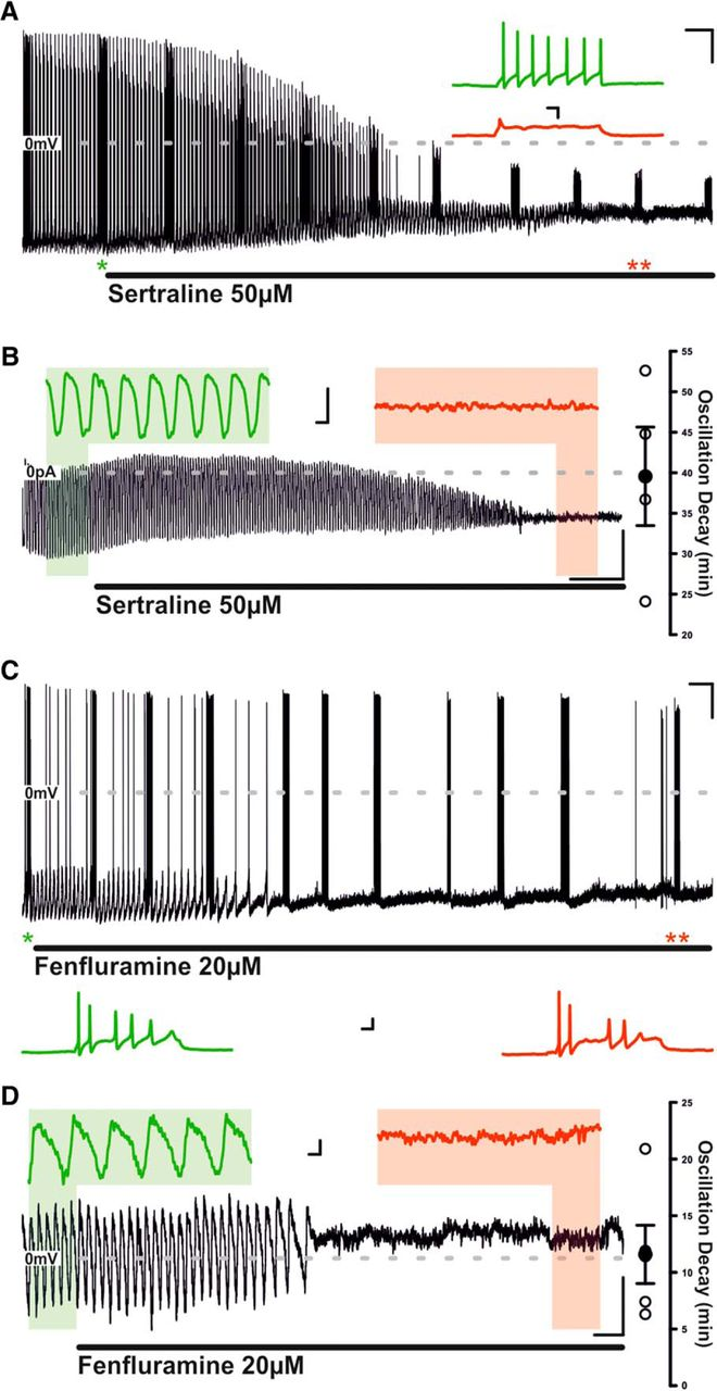 Neural communication ssris and sexual dysfunction