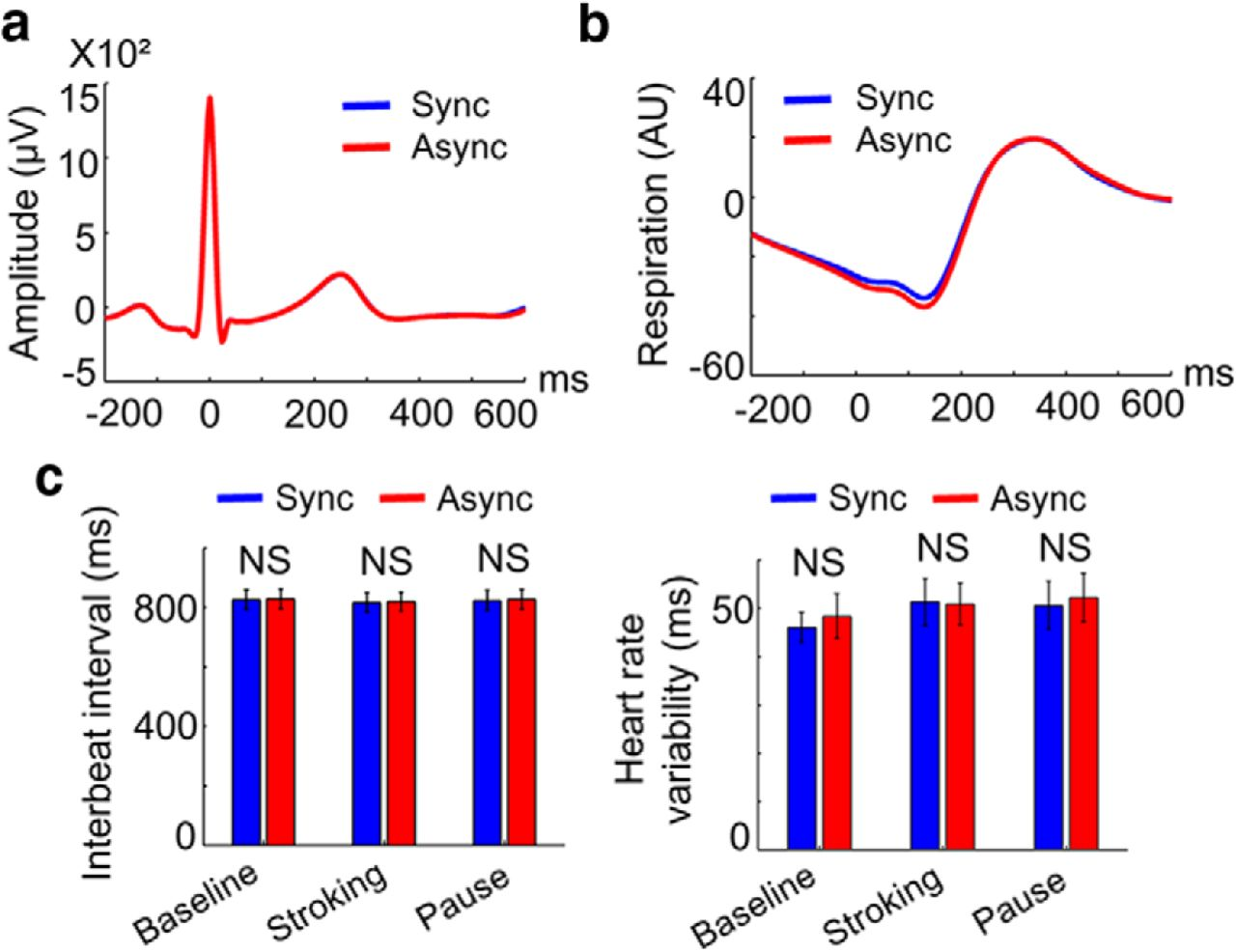Transient Modulations of Neural Responses to Heartbeats
