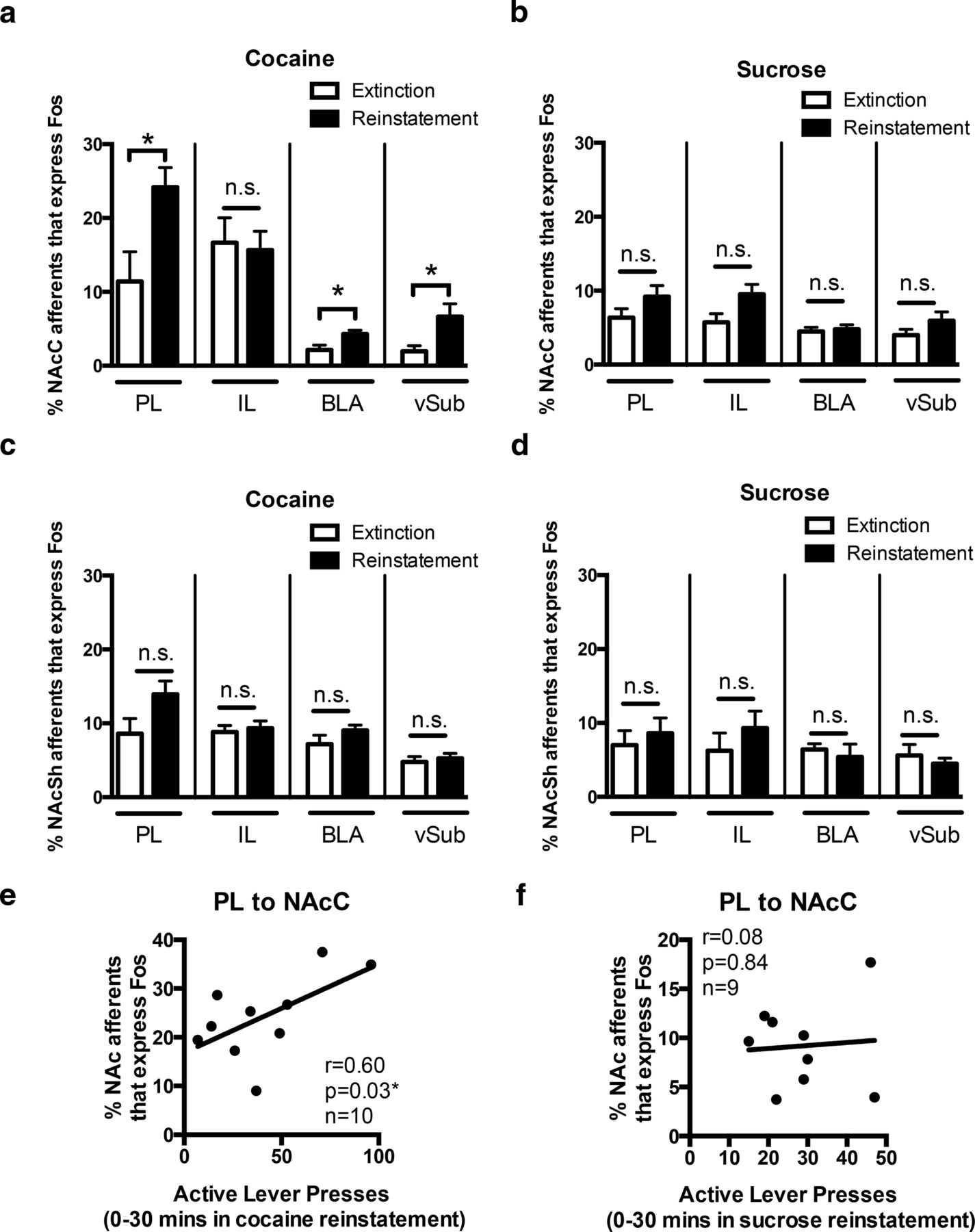 Prelimbic to Accumbens Core Pathway Is Recruited in a Dopamine