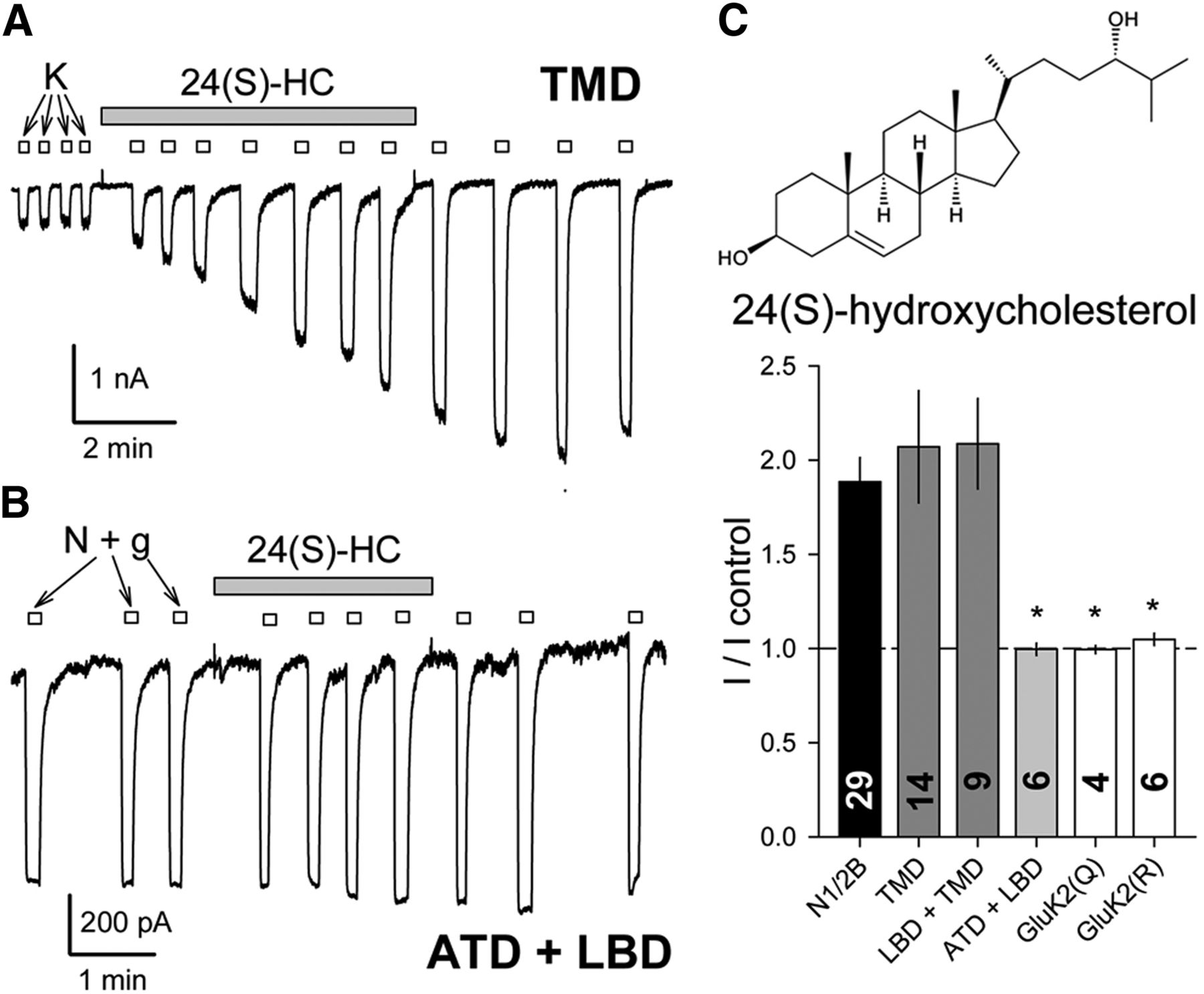 Chimeric Glutamate Receptor Subunits Reveal The Transmembrane Domain Is Sufficient For Nmda Receptor Pore Properties